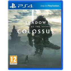 Shadow of the Colossus - Usato
