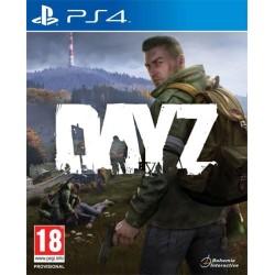 DayZ - Usato